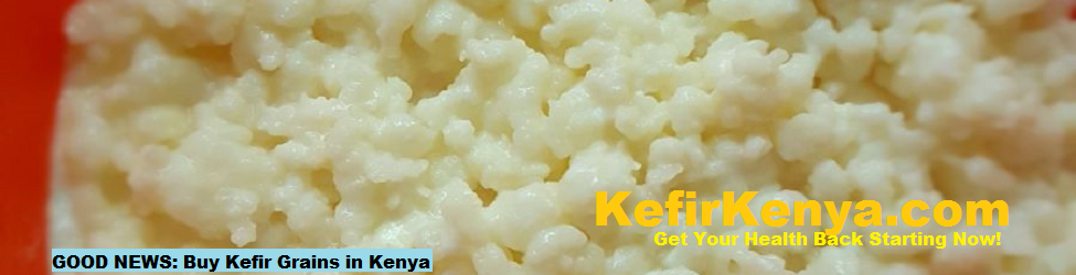 Kefir Grains Kenya